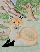 Jeanette K - Red Fox