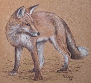 Cork Pyrography Framed Prints - Red fox Framed Print by Manon  Massari