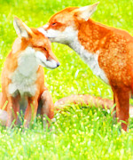 Marian Cates Metal Prints - Red Foxes I Metal Print by Marian Cates