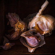 Artistic Photo Prints - Red garlic White garlic Print by Constance Fein Harding