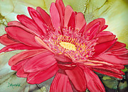 Gerbera Daisy Paintings - Red Gerbera Daisy by Diane Marcotte