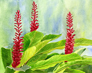 Red Flowers Painting Posters - Red Ginger Flowers with Background Poster by Sharon Freeman