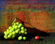 Merlot Photos - Red Grape by Patrick J Osborne