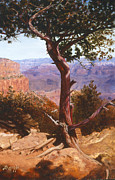 Canyons Paintings - Red Green Grand by Lee Baggs