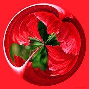 Red And Green Photo Metal Prints - Red Hibiscus Orb Metal Print by Kaye Menner