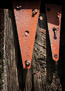 Hinges Framed Prints - Red Hinges on Weathered Wood Framed Print by Rebecca Sherman