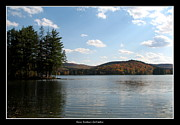 Sofranko Framed Prints - Red House Lake Allegany State Park NY Framed Print by Rose Santuci-Sofranko