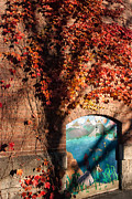 Red Ivy Brickwall Shelburne Falls Massachusetts Print by Robert Ford