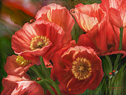 Oriental Poppy. Posters - Red Ladies Of Summer Poster by Carol Cavalaris