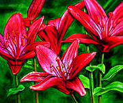 Easter Flowers Framed Prints - Red Lilies Framed Print by John Lautermilch