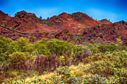 Red Mountains Prints - Red Mountains Print by Douglas Barnard