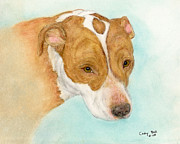 Staffordshire Bull Terrier Paintings - Red Nose Pitbull Staffordshire Terrier Dog Art by Cathy Peek