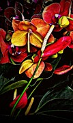 Orchids Art - Red Orchids Vertical by Miriam Danar