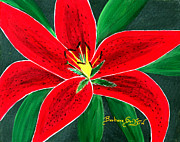 Hybrid Paintings - Red Oriental Daylily by Barbara Griffin