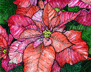Stippling Painting Framed Prints - Red poinsettias II Framed Print by Hailey E Herrera