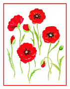 Card Paintings - Red Poppies by Irina Sztukowski