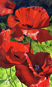 Poppy Painting Framed Prints - Red Poppies Framed Print by Suzanne Schaefer