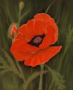 Single Pastels Posters - Red Poppy Poster by Anastasiya Malakhova