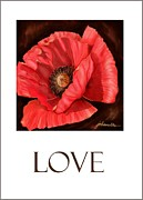 Joan A Hamilton - Red Poppy Card