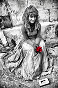 Sicily Photo Prints - Red Red Rose in Black and White Print by David Smith