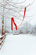 Mystery Prints - Red Ribbon In Tree Print by Christopher Elwell and Amanda Haselock