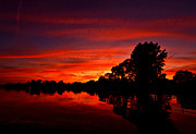 Amazing Sunset Metal Prints - Red Ripples Metal Print by Matt Molloy