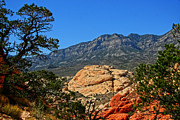 Red Rock Photos - Red Rock Canyon 4 by Chris Brannen