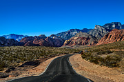 William Shevchuk - Red Rock Canyon