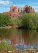 Red Rock Crossing Framed Prints - Red Rock Crossing in Sedona Framed Print by Sandra Bronstein