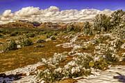 Cottonwood Digital Art - Red Rock Secret Mountain Wilderness Sedona Arizona by Nadine and Bob Johnston