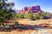 Sedona Prints - Red Rocks in Sedona AZ Print by James Steele
