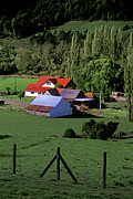 Red Roofed Barn Chiloe Island Print by Craig Lovell