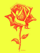 Gordon Punt Prints - Red Rose Drawings 5 Print by Gordon Punt