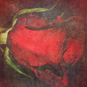 M Montoya Alicea - Red ROSE