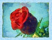 Red Rose On Blue Print by Dana Hermanova