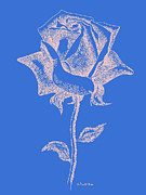 Gordon Punt Prints - Red Rose Prints 12 Print by Gordon Punt