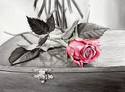 Hailey E Herrera Posters - Red Rosebud on the Jewelry Box Poster by Hailey E Herrera