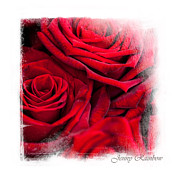 Framing Posters - Red Roses. Elegant KnickKnacks Poster by Jenny Rainbow