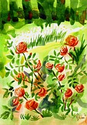 Watercolors Painting Originals - Red Roses with Daisies in the Garden by Kip DeVore