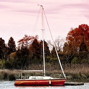 Fall Photos Framed Prints - Red Sailboat Framed Print by John Rizzuto