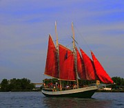 Struckle Prints - Red Sails Print by Kathleen Struckle