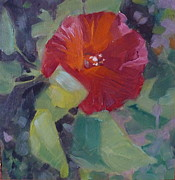 Phyllis Rosenberg - Red single hibiscus