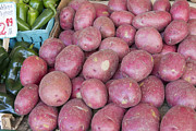 Locally Grown Metal Prints - Red Skin Potatoes Stall Display Metal Print by JPLDesigns