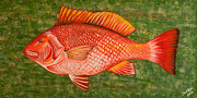 Susan Cliett - Red Snapper
