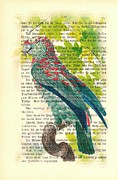 Parrot Art Print Mixed Media - Red Spotted Parrot by Little Vintage Chest