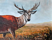 Louise Charles-Saarikoski - Red Stag in Autumn...