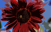 Closeup Metal Prints - Red Sun honey cut out Metal Print by Scott Campbell