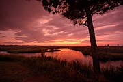 Featured Digital Art Originals - Red Sunrise on Lake Shelby by Michael Thomas