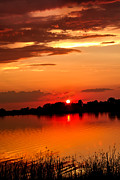 Sawyer Prints - Red Sunset Beauty Print by Robert Bales
