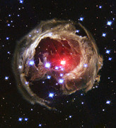 V838 Monocerotis Prints - Red Supergiant Star V838 Monocerotis Print by Astronomy  Gift Shop